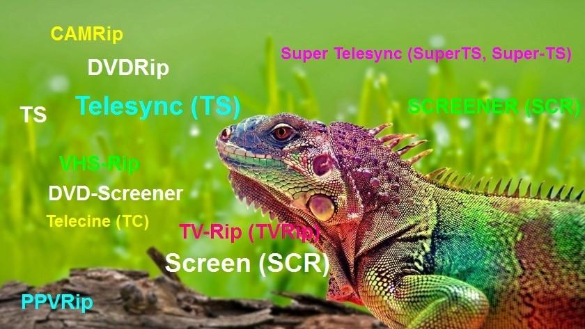 Что такое CAMRip, DVDRip и т.д?