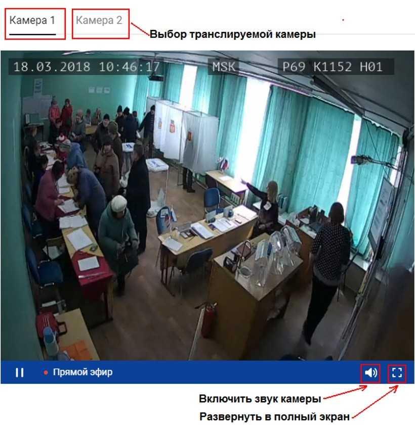 Веб-камеры онлайн на избирательных участках 2018