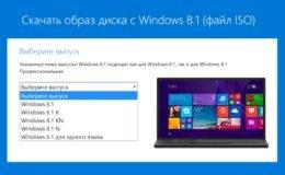Что такое Windows K, N, KN и SL